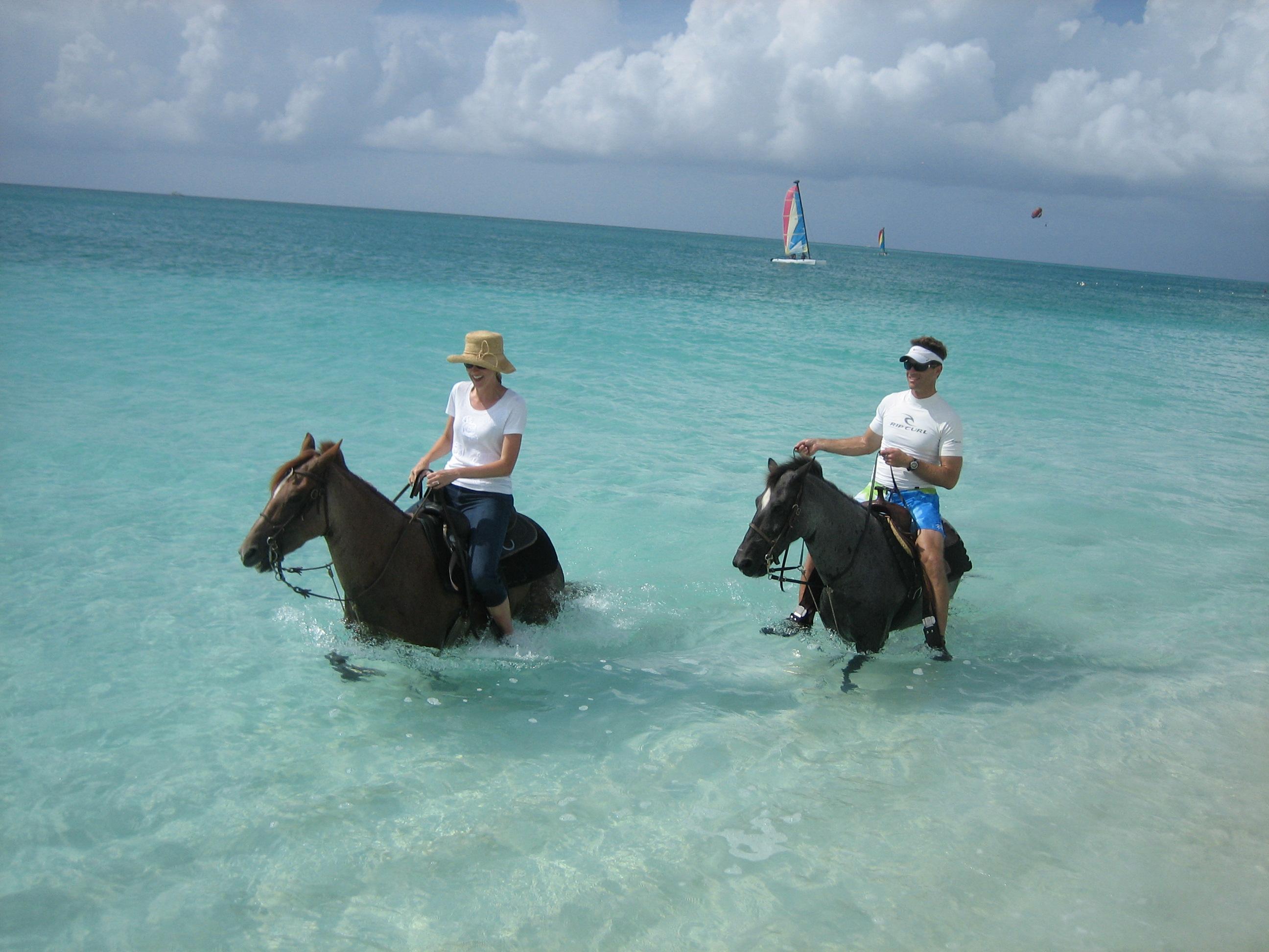 Horse Back Riding Miami And Lion Photos