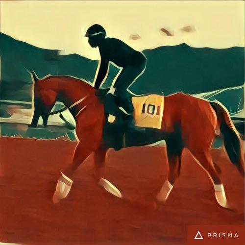 Holy Cow I Saw California Chrome! | Saddle Seeks Horse