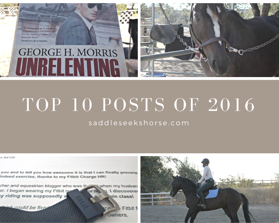 Saddle Seeks Horse Top 10 Posts from 2016 | Saddle Seeks Horse