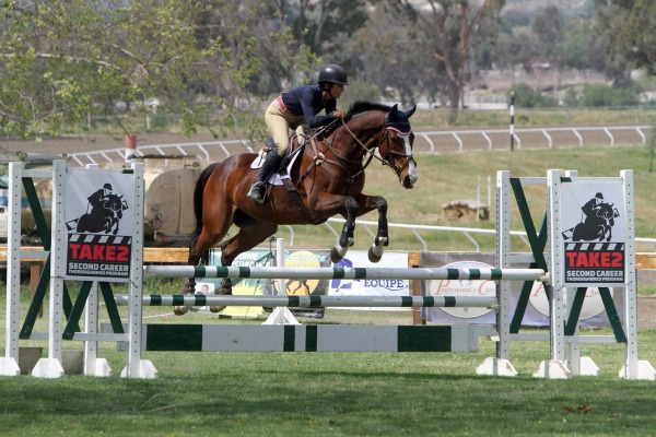 10 Reasons to Go to an All-Thoroughbred Horse Show | Saddle Seeks Horse