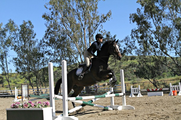 Rob Gage Jumping Clinic Day Two | Saddle Seeks Horse