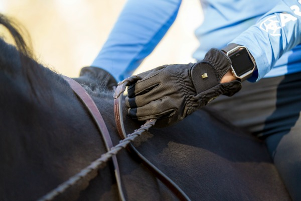 Roeckl Glove Review and Giveaway! | Saddle Seeks Horse