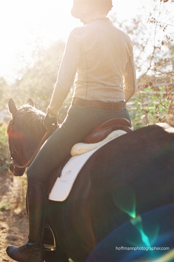 Avoid This Dangerous Donut in the Saddle | Saddle Seeks Horse