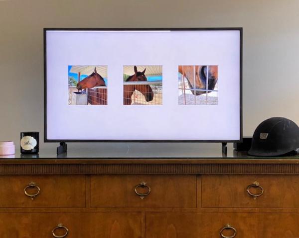 Team Building: Samsung Frame TV: un téléviseur intelligent pour les amateurs de chevaux (ou n'importe qui) | Selle cherche cheval 2020
